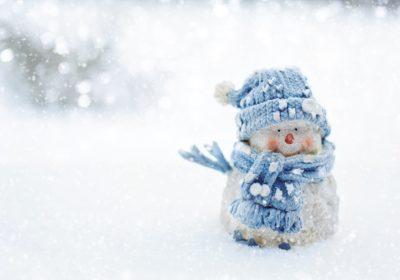 Vos bonhommes de neige en ligne !