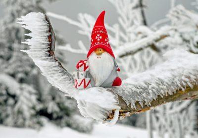 Nos aînés dans la joie et la bonne humeur de Noël