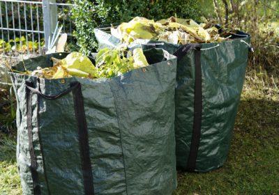 Ramassage des déchets verts